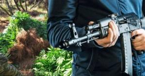 Χασισοκαλλιεργητές με καλάσνικοφ και χειροβομβίδες, δύο συλλήψεις
