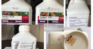 Διακίνηση πλαστού φυτοπροστατευτικού Coragen 20SC