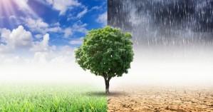 Κλιματική αλλαγή: Προς το 2050 οι μεγάλες πόλεις θα αντιμετωπίσουν πρωτόγνωρες συνθήκες