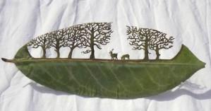 Σκαλίζοντας… φύλλα δέντρων