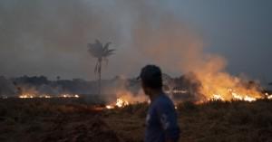 Οι κύριες αιτίες για τις φωτιές στον Αμαζόνιο