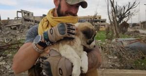 Το κουτάβι που επέζησε από τη βομβαρδισμένη Συρία ζει με τον διασώστη του στη Βρετανία