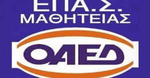 Χανιά: Ξεκινούν οι εγγραφές στον ΟΑΕΔ-ΕΠΑΣ στον Ταυρωνίτη