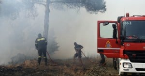 Ηράκλειο: Υπό έλεγχο τέθηκε η φωτιά στις Γωνιές του Δήμου Μαλεβιζίου (φώτο)