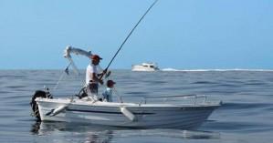 Ανανέωση ισχύος αδειών επαγγελματικών αλιευτικών σκαφών