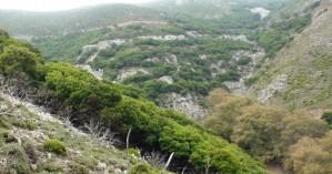 Ο Ορειβατικός Σύλλογος Χανίων στην κορυφή Άγιος Δίκαιος