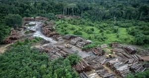 Βραζιλία: Η αποψίλωση της Αμαζονίας σχεδόν διπλασιάστηκε σε έναν χρόνο