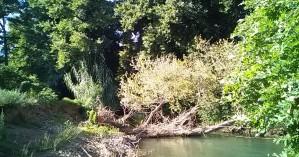 Πρωτοποριακό έργο προστασίας του Κοιλιάρη ποταμού στον Αποκόρωνα (φωτο-βίντεο)