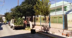 Εργασίες πρασίνου εκτελεί ο Δήμος Μαλεβιζίου