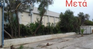 Απομάκρυνση επικίνδυνων κλαδιών από τις εγκαταστάσεις του ΕΑΚΗ