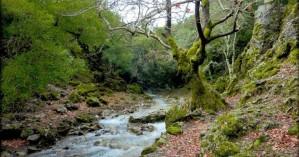 Ορειβατικός Σύλλογος Αγίου Νικολάου: Πεζοπορία στο Φαράγγι του Ρούβα