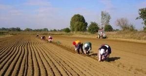 Την Κυριακή 24 Νοεμβρίου οι εκλογές στον Αγροτικό Σύλλογο Ιεράπετρας