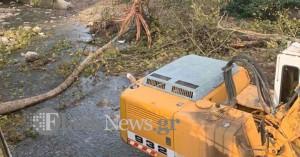 Δέντρο καταπλάκωσε και σκότωσε άνδρα στα Χανιά (φωτο)