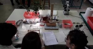 Μαθητικός Διαγωνισμός Πειραμάτων EUSO 2020 από το ΕΦΚΕ Χανίων