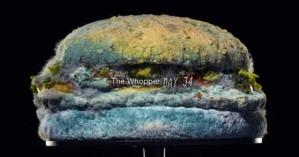Εντυπωσιακό βίντεο: Πώς καταστρέφεται ένα burger