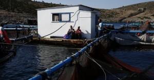 Χειμώνας στο Αγαθονήσι: Λιγοστά παιδιά, κλειστές ταβέρνες και το ταξίδι στη Σάμο