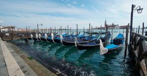 Ο κορονοϊός «έφερε» δελφίνια και κύκνους στα κανάλια της Βενετίας