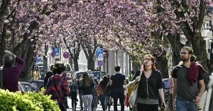 Γερμανία – Κορονοϊός: Παραβάσεις και μηνύσεις για παραβιάσεις των μέτρων κατά της νόσου