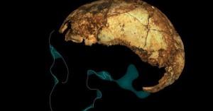 Ανακαλύφθηκε στη Νότια Αφρική το αρχαιότερο στον κόσμο κρανίο «Homo erectus»