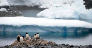 Η κλιματική αλλαγή κάνει… πράσινη την Ανταρκτική