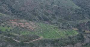 Μεγάλη απάτη Κρητικών κτηνοτρόφων στα Κύθηρα για να