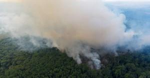 Καταστροφή ρεκόρ του τροπικού δάσους της Αμαζονίας το πρώτο εξάμηνο του 2020
