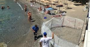 Χελώνες Καρέτα - Καρέτα γεννούν τα αυγά τους σε παραλία του Αγίου Νικολάου (βίντεο)