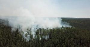 """Σιβηρία: Η κλιματική αλλαγή την έκανε… Χαβάη! Με """"38άρια"""" η πιο ζεστή χρονιά στην ιστορία"""