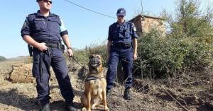 Συνοριοφύλακες: Τρέχουν οι αιτήσεις για 746 προσλήψεις στην αστυνομία