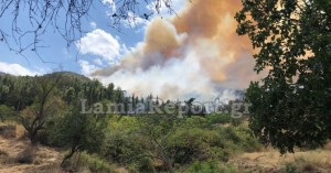 Συναγερμός για πυρκαγιά πάνω από τα σπίτια στην Αταλάντη
