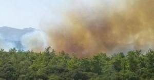 Μεγάλη φωτιά σε δασική έκταση στο Βαθύ Αγίου Νικολάου (φωτο+βιντεο)