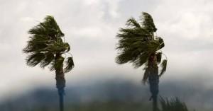 Ισχυροί νοτιάδες στα Χανιά - Μεγάλη προσοχή σε μετακινήσεις και σε εύφλεκτα υλικά (βιντεο)