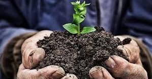 Ομάδες παραγωγών: μονόδρομος για την επιβίωση των αγροτών
