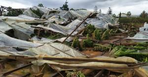 Βομβαρδισμένο από το χαλάζι τοπίο τα Μάλια - Oλική καταστροφή σε θερμοκήπια! (φωτο)