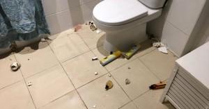 Τρομακτικός επισκέπτης στην τουαλέτα οικογένειας προκάλεσε πανικό μέσα στη νύχτα