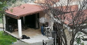 Έγκλημα στα  Μεσκλά: Μαχαιρωμένη στον λαιμό μια 54χρονη γυναίκα (φωτο)