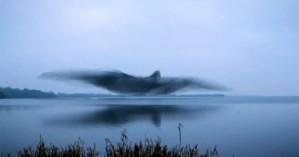Εντυπωσιακό θέαμα: Σμήνος από ψαρόνια σχηματίζει τεράστιο πουλί στον ουρανό