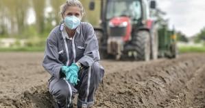 Εγκύκλιος για βεβαιώσεις εγγραφής στο Μητρώο κατ' επάγγελμα αγροτών