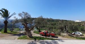 Ολοκληρώθηκε το Δεκαήμερο καθαρισμού και καλλωπισμού του Δήμου Πλατανιά