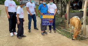 Ασία: Εμβολιαστείτε κατά του κοροναϊού και κερδίστε…κότες, αγελάδες ακόμα και διαμερίσματα