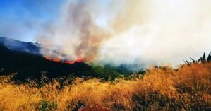 Σε ύφεση η φωτιά στο Θραψανό Ηρακλείου