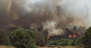 Ρόδος: Μεγάλη φωτιά σε δασική έκταση σε Παντάνασσα - Εκκενώνεται η Κοιλάδα των Πεταλούδων
