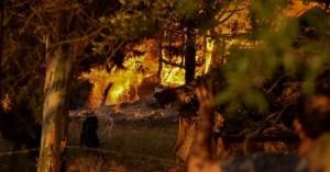 Τέσσερα μεγάλα μέτωπα πυρκαγιών – Εκκενώνονται οικισμοί σε Αγρίνιο και Ρόδο