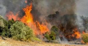 Φωτιά στη Μεσσηνία: Πληροφορίες για ζημιές σε σπίτια – Εκκενώθηκαν κοινότητες