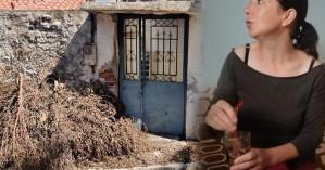 Πλάκωσαν στο ξύλο σε φυλακές τον Ρουμάνο κατηγορούμενο για τη δολοφονία της Μόνικα Γκιους