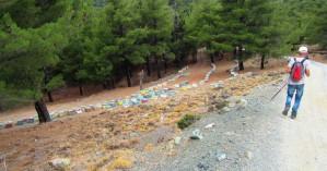 Στο δάσος του Σελάκανου ο Ορειβατικός Σύλλογος Αγίου Νικολάου