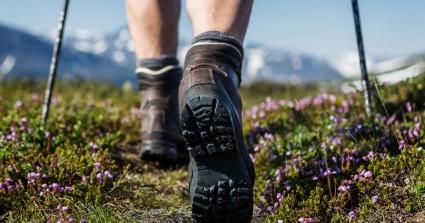 Ο Ορειβατικός Σύλλογος Χανίων στο Φαράγγι Καλλικράτη
