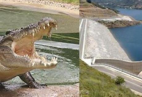 Έδωσαν (παράνομα;) άδεια Υβριδικού Σταθμού στην Λίμνη του Κρητικού Κροκόδειλου – Μέτοχοι η γνωστή BLACKROCK μαζί με ΓΕΚ και ΤΕΡΝΑ