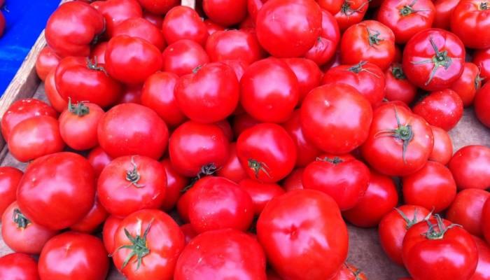 Δωρεάν ντομάτες σε πολύτεκνους και άπορους στον δήμο Κισσάμου