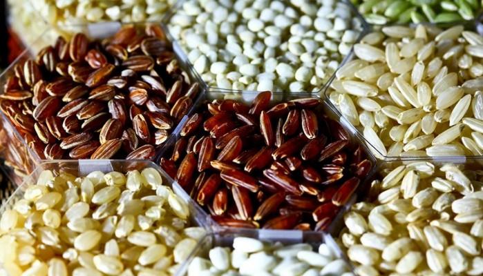 Γιορτή σπόρων και αυτάρκειας